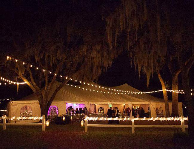 TAMPA Large white tent wedding - Image - 14