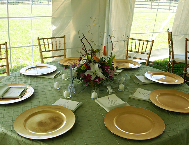 Tent and table rentals - Image 5