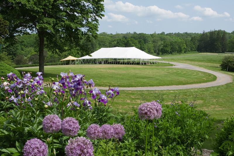 Outside tent rentals - Image 15